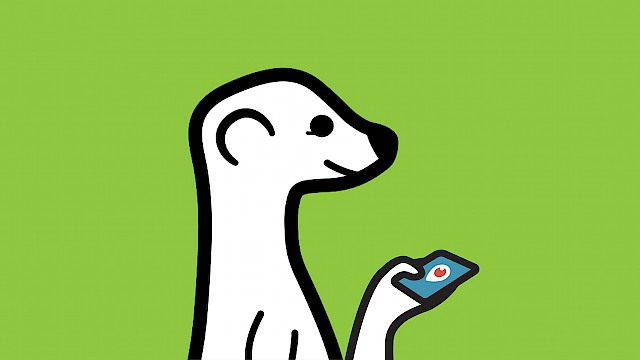 Periscope and Meerkat logos