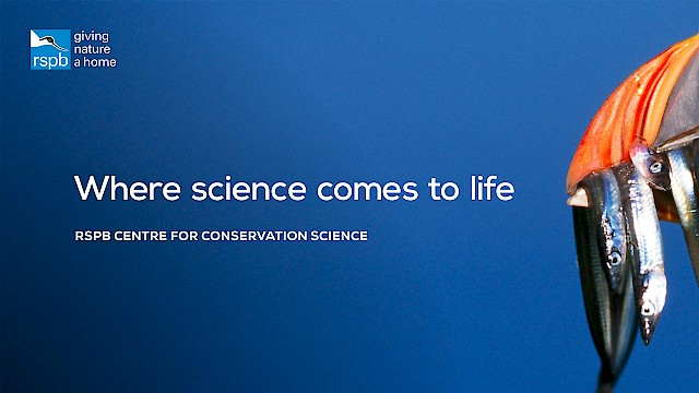 Creative for RSPB Centre for Conservation Science