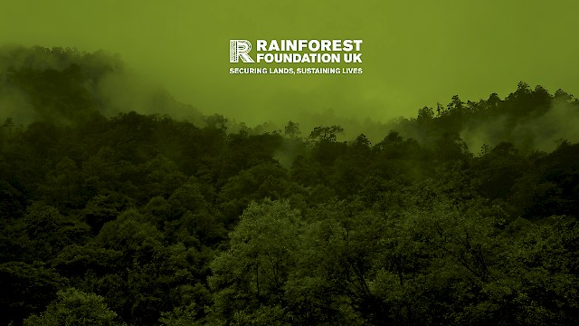The Rainforest Foundation UK logo and rainforest