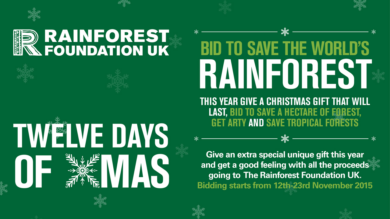 Rainforest Foundation UK '12 Days of Christmas' campaign creative
