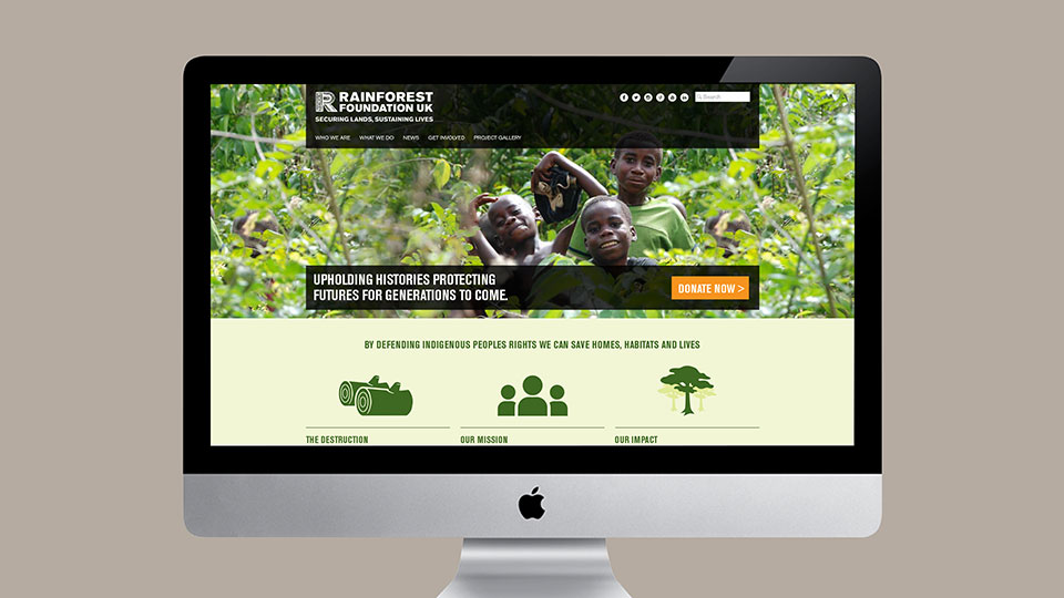 Rainforest Foundation UK website design