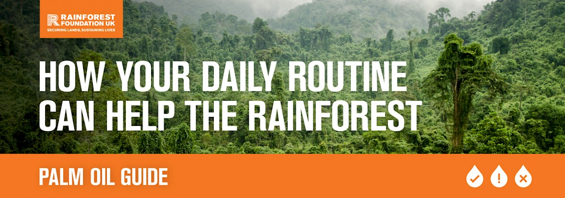 Rainforest Foundation UK campaign creative to educate people about the dangers of palm oil - photograph of rainforest